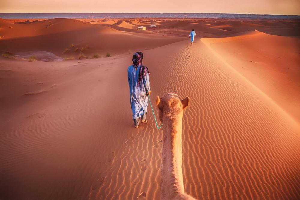 cameltrophytours-Morocco-desert-tour.